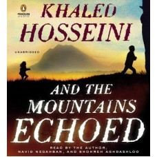 A Thousand splendid suns and the mountains echoed by Khalid Hossenei