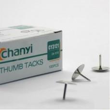 100 Drawing Thumb Pins